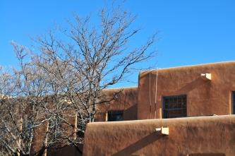 Wall tree sky.jpg