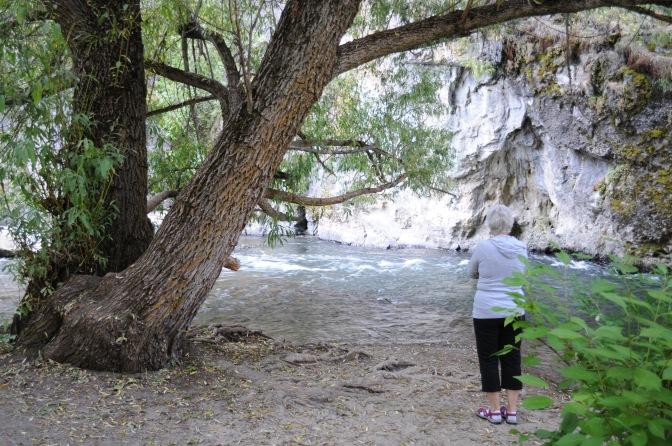 Andrea along the creek.jpg