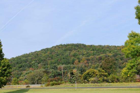 Fall Hillside.jpg