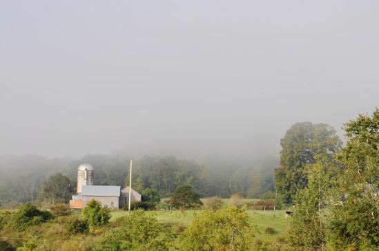 Fram in fog closeup.jpg