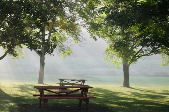 Picnic tables in fog.jpg