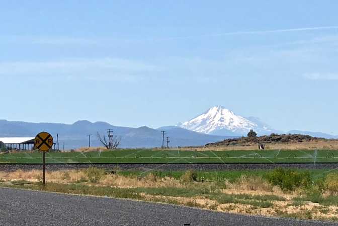 2 Mt Shasta (1)