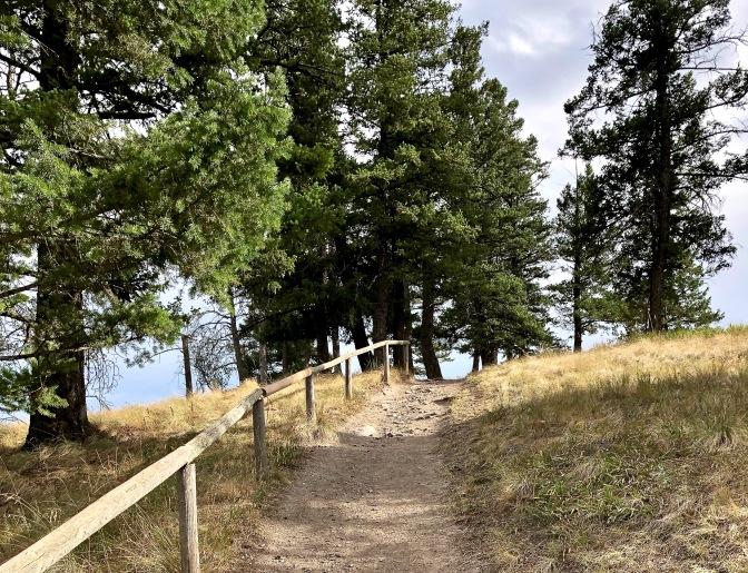 9 Lone Pine path