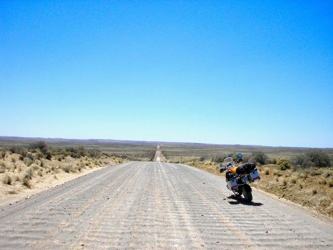 Desert Bare 1